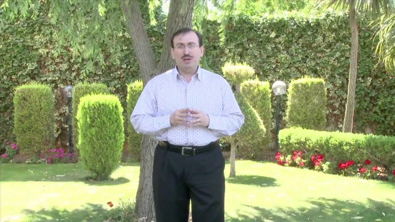 صورة فوائد الزنجبيل جميل القدسي , ابداعات الزنجبيل على طريقة الدكتور جميل القدسي