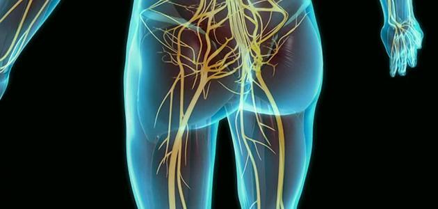 طريقة تقويه عصب الجسم