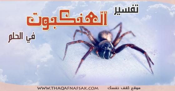 صورة العنكبوت في المنام