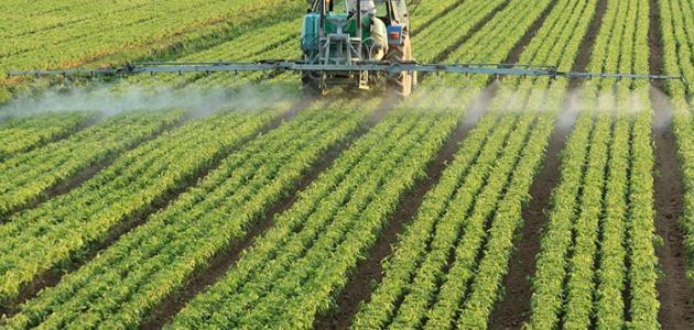 صورة انواع المنتجات الغذائية الطبيعية , غذاء التربة وانواع المنتجات الاساسية بها