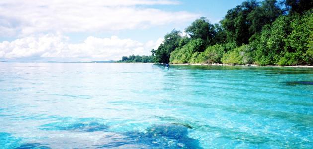 صورة حلم البحر