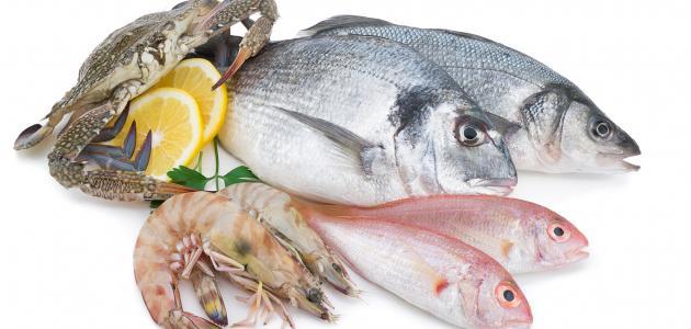صور تفسير رؤية السمك في المنام