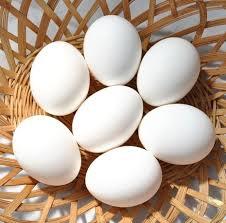 صورة تفسير حلم البيض