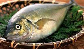 صور تفسير حلم سمك