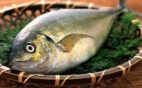 صورة تفسير حلم سمك