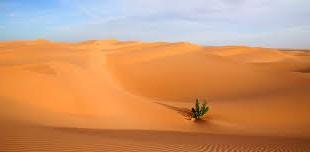 صورة تفسير حلم الرمل