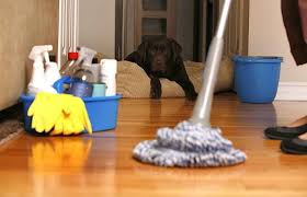 صور تفسير حلم تنظيف البيت