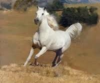 صورة تفسير حلم حصان