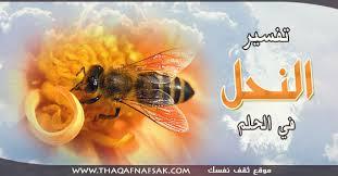 بالصور تفسير حلم النحل download 981
