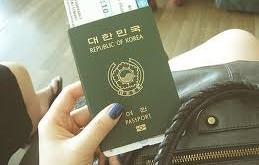 صور تفسير حلم جواز السفر
