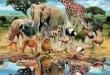 صور تفسير حلم الحيوانات