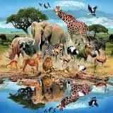 بالصور تفسير حلم الحيوانات images 111