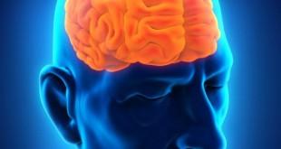 اورام الدماغ , اصابات سرطان المخ في اعمار مختلفة