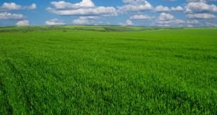 صورة انواع السهول في العالم , سهول خضراء مبهرة الشكل