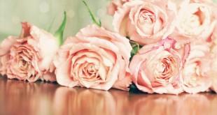 صورة تصاميم ورود , الوان الورد الرقيقة 2020
