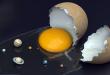 صور تفسير الاحلام بيض