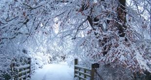 صور شتاء , خلفيات عن جمال الشتاء لعشاقة