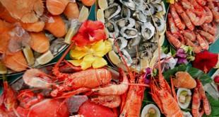 الاكلات البحريه , كمية فوائد لا حصر لها لتناولك الاكلات البحرية