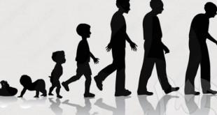 صورة علم النفس النمو الطفولة والمراهقة pdf , ماهي مراحل نمو الانسان في علم النفس