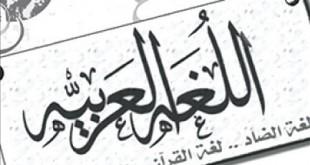 صورة كلمات غريبة باللغة العربية , كلام شعبي و مشهور في مصر