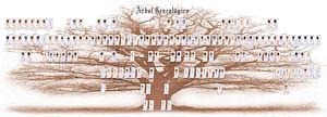 صورة معرفة شجرة العائلة , شجر العيلة ورسمها