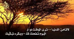 صورة حكم عن الدنيا الغدارة، لو تعبت من غدر الدنيا تعرف على الحكم التى تتعامل بها